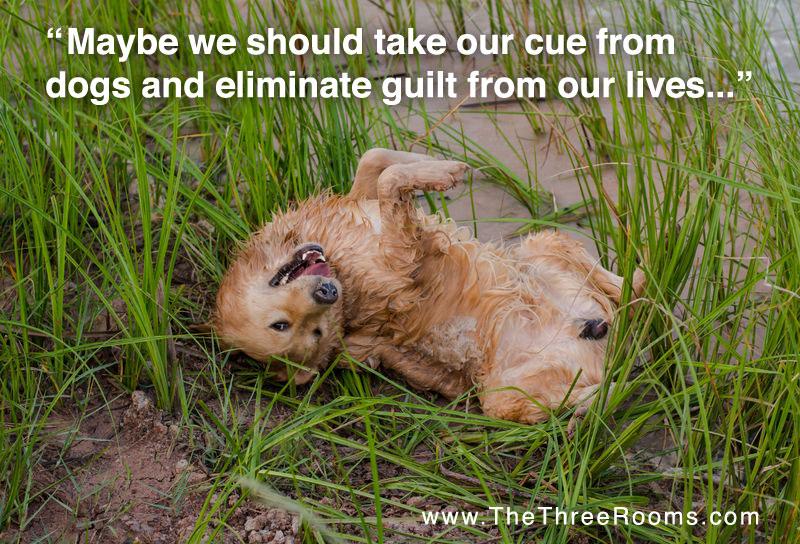 Guilt Breeds Misery